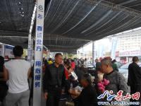 泰安广电车展参展车型多,价格低 受追捧