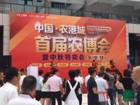 台州2016中秋盛宴万人购车节华丽启幕