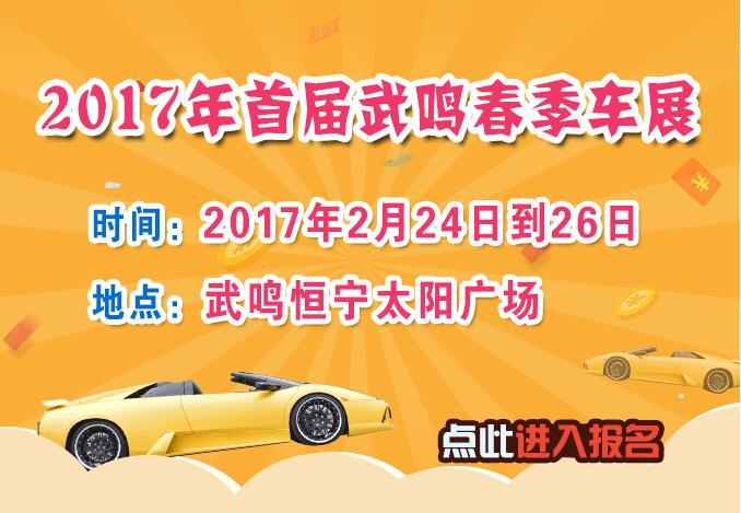 2017年首届武鸣春季车展