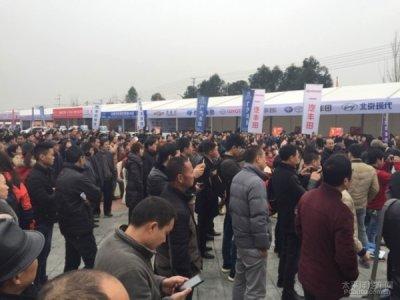 2016年德阳首届德广国际车展开幕了