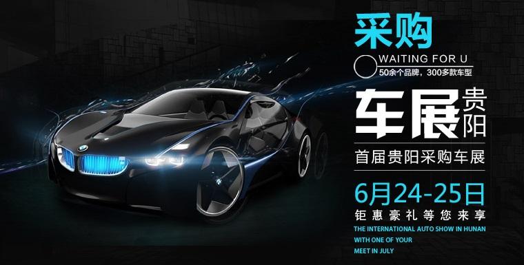 2017年首届贵阳采购车展