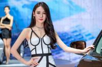 2017郑州国际车展抢票进入倒计时