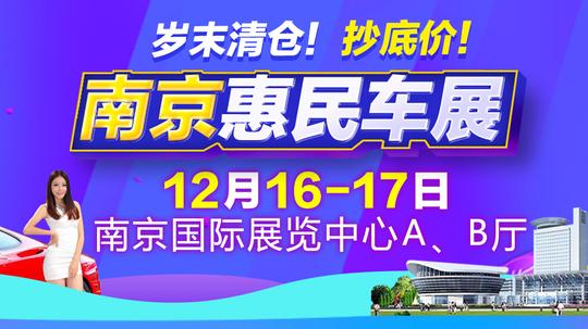 2017第6届南京惠民车展