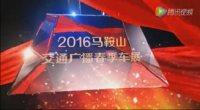 2016马鞍山交通广播春季车展