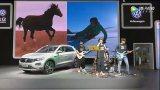 2018佛山瀚众一汽-大众首款SUV五一车展惊艳首秀