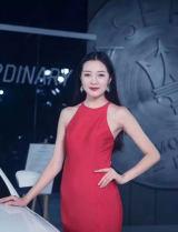 第十九屆中國(昆明)國際汽車博覽會車模