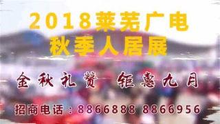 2018年莱芜秋季人居展车展