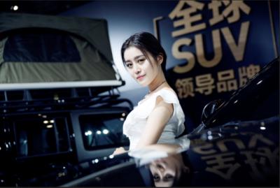 买车,咱河南人更信赖郑州国际车展!