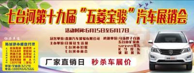 七台河第19届步行街车展今日17点至19点特卖会