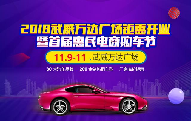 2018武威万达广场钜惠开业暨首届惠民电商购车节