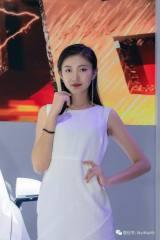 2018南昌尚格车展