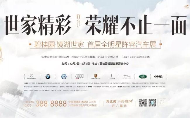2018合肥碧桂园镜湖世家首届全明星阵容汽车展
