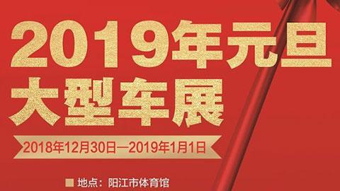 2019阳江元旦大型车展