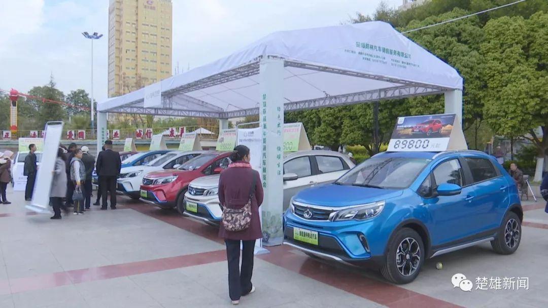 多款新能源汽车亮相楚雄首届新能源车展