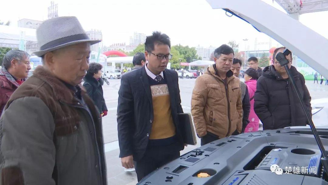 楚雄新能源车展