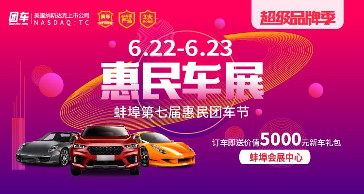 2019蚌埠第七届惠民车展