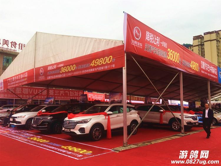 巴中汽车博览会