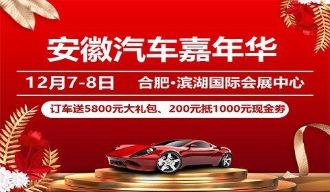 2019安徽汽车嘉年华(12月)