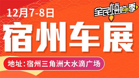 2019宿州第八届惠民车展