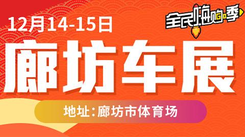 2019廊坊第十届惠民车展