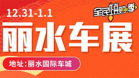 2019丽水第八届惠民车展
