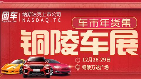 2019铜陵第一届惠民车展