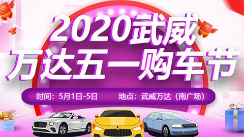 2020武威万达五一购车节