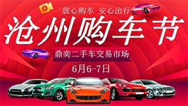 2020第二十届沧州购车节