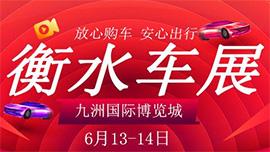 2020衡水首届惠民团车节