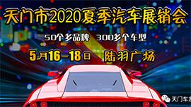 天门市2020年夏季汽车展销会