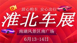 2020第十届淮北团车节