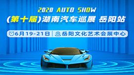 2020第十届湖南汽车巡展-岳阳站