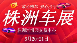 2020第十七届株洲惠民团车节