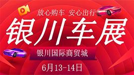 2020银川第十九届购车节