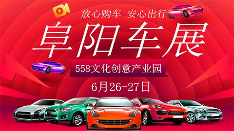 2020第十五届阜阳惠民车展