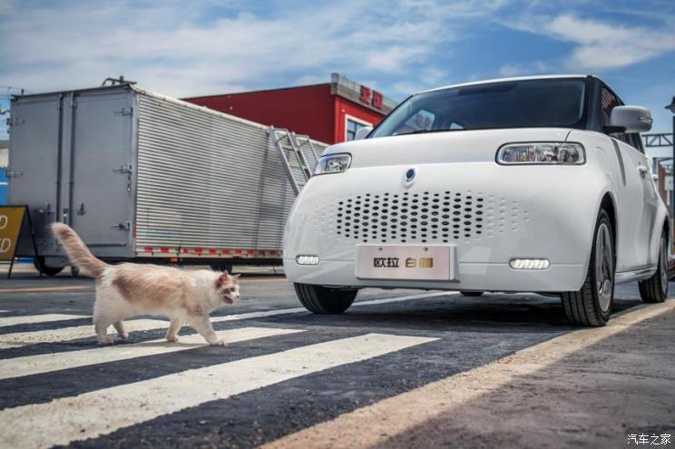 欧拉R2正式定名为欧拉白猫