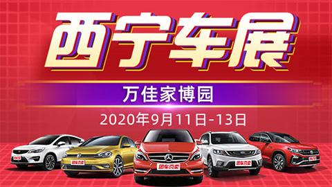 2020西宁首届惠民团车节