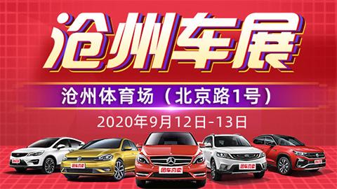 2020第二十四届沧州惠民车展