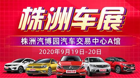 2020第十九届株洲惠民团车节