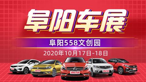 2020第十六届阜阳惠民车展