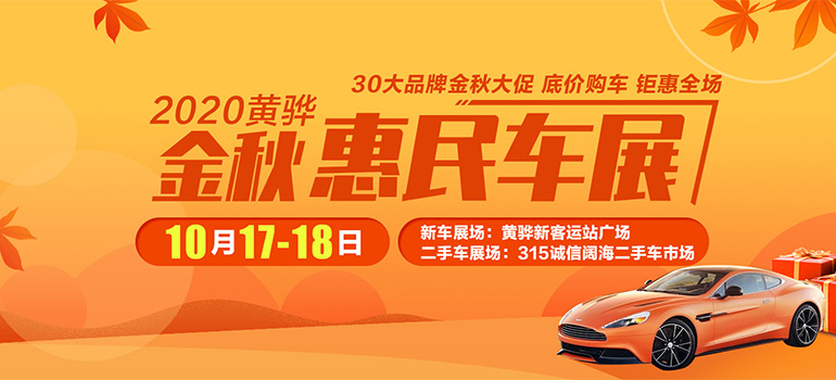 2020黄骅金秋惠民车展