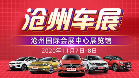2020沧州第二十五届惠民团车节