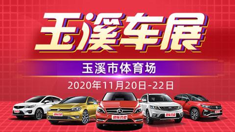 2020玉溪惠民团车节暨第七届国际汽车品牌文化展