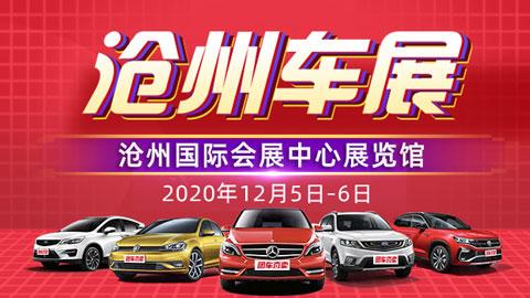2020沧州第二十六届惠民团车节