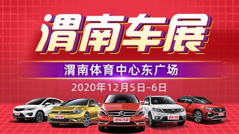 2020渭南第十一届惠民团车节