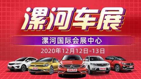 2020漯河第十二届惠民车展