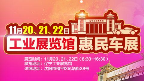 2020辽宁工业展览馆惠民车展