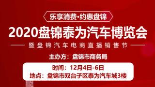 2020盘锦泰为汽车博览会