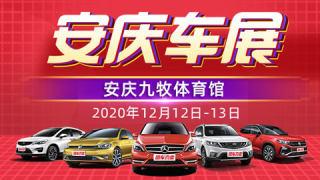 2020安庆第十四届惠民购车节