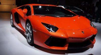 你想去新疆315国际车展看什么?